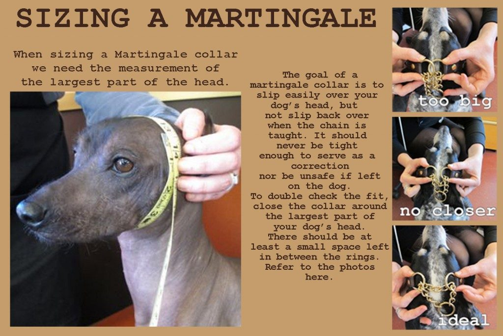 how to size a martingale collar